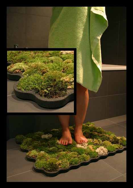 moss collage